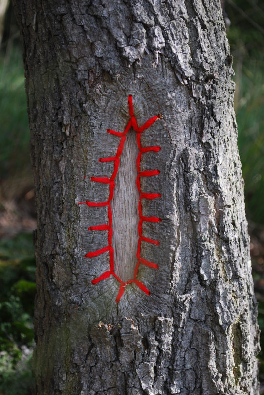 Hannah Streefkerk, Tree restorations, 2010, Tree mended with yarn and stitches for the Landart biennale Valkenswaard, The Netherlands